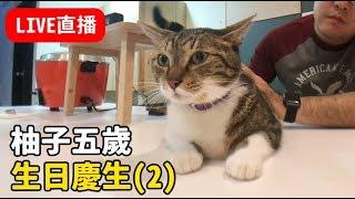【黃阿瑪的直播】柚子五歲生日2