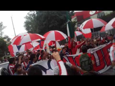 """""""Chivas es alegria...recibimiento previo al clasico CDMX Barra insurgencia  🔵⚪🔴"""" Barra: Barra Insurgencia • Club: Chivas Guadalajara"""