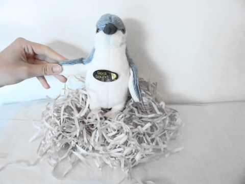 Little Blue Penguin Toy with Authentic Sound