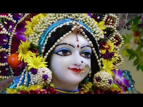 জয় জয় রাধাকৃষ্ণ যুগল মিলন || Jaya Jaya Radha Krishna Jugala Milana