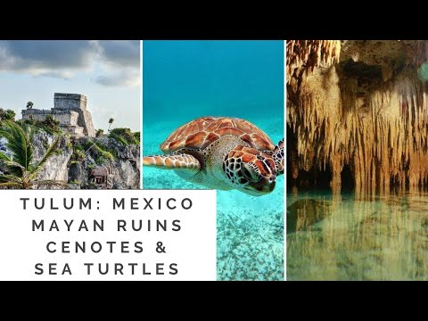 Tulum, Mexico: Mayan Ruins, Cenotes, & Sea Turtles