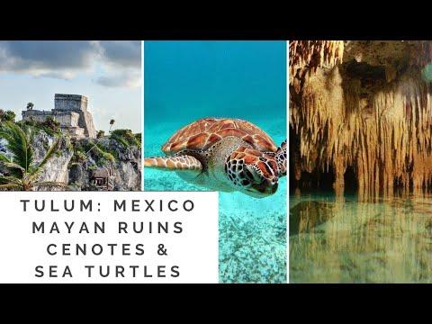 Tulum, Mexico: Mayan Ruins, Cenotes, & Sea Turtles