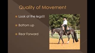 UNL Horse Judging - Judging Western Pleasure
