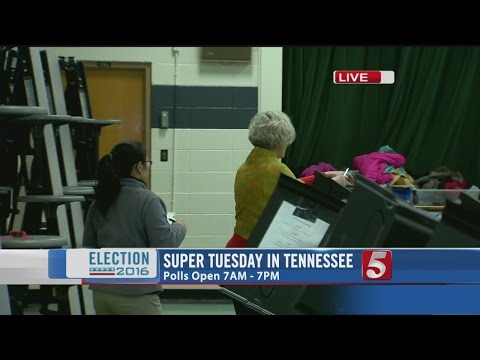 Voters Head To Polls For TN Presidential Primary