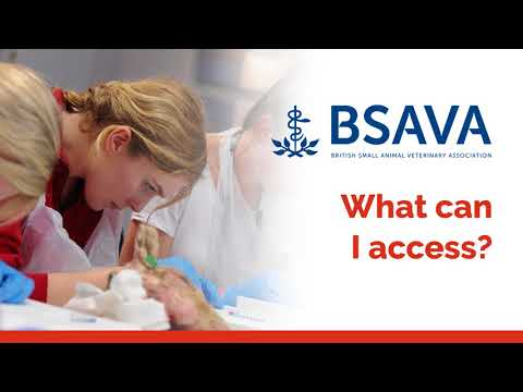 Introducing the new BSAVA Library!