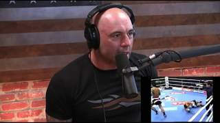 Joe Rogan on Combat Sports & Brain Damage