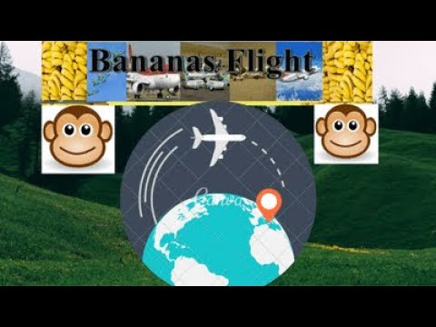 Download X Plane 11 Flight Management Computer Video 3GP Mp4 FLV HD