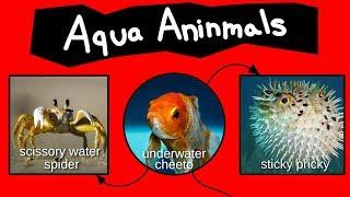 Aqua Aninmals