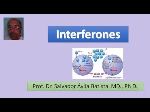 Balanoposthitis a prosztatagyulladás hátterében