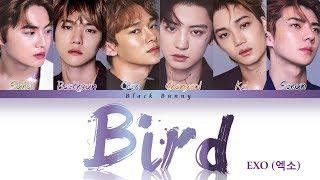 EXO(엑소)   BIRD (Color Coded Lyrics KanRomEng歌詞)