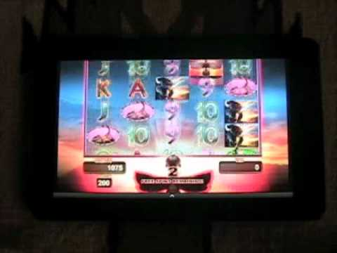 Video of Buffalo Gold Video Slot Game