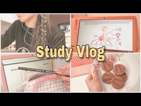 #18 STUDY VLOG | 2 DIAS DE ESTUDOS ( FINALMENTE ESTUDANDO PELO NOTEBOOK!!! )*FIZ MOUSSE DE MARACUJÁ*