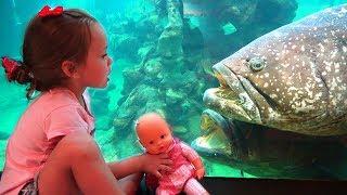 Maya in the oceanarium looks at different fishes