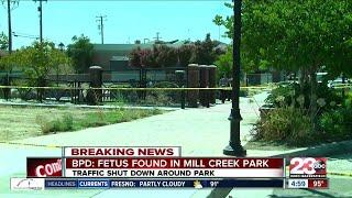 BPD found a fetus at Mill Creek Park