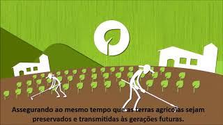 Conheça o lado socio-responsável da doTerra