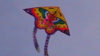 Kite Festival at Kovalam