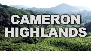 preview picture of video 'Cameron Highlands, One of Malaysia's Most Extensive Hill Stations'
