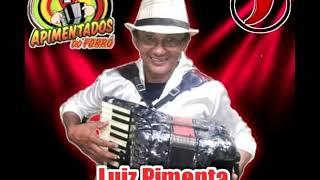 LUIZ PIMENTA - RODEIO DE AMOR - (MÚSICA NOVA)