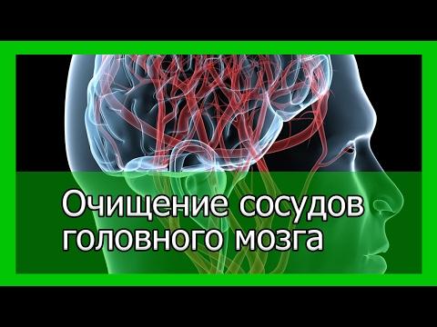 Очищение сосудов головного мозга народными средствами