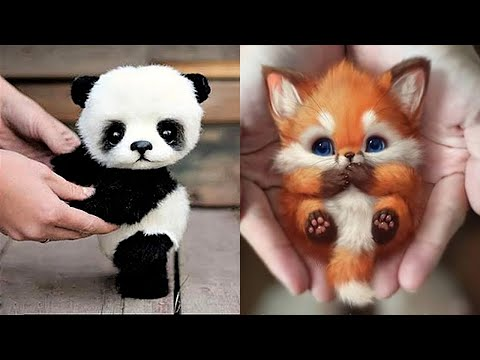 The Most Adorable Baby Wild Animals You'll Ever See