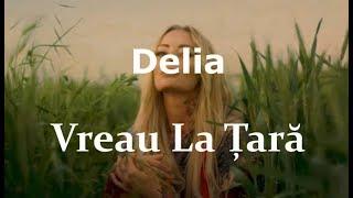 Delia   Vreau La Tara (Versuri  Lyrics)