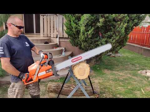 Video bemutató egy parazitáktól való tisztításhoz