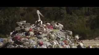 Video Sistem Erorr - Človek / Human (Official Video)