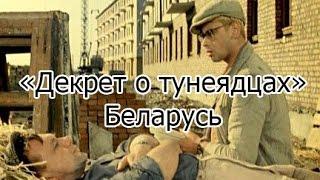 Закон о тунеядцах. Декрет о тунеядцах в Беларуси. Приколы из жизни
