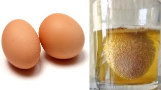 Mit Hilfe eines Ei's wirst du nie wieder Knochen- und Gelenkschmerzen haben