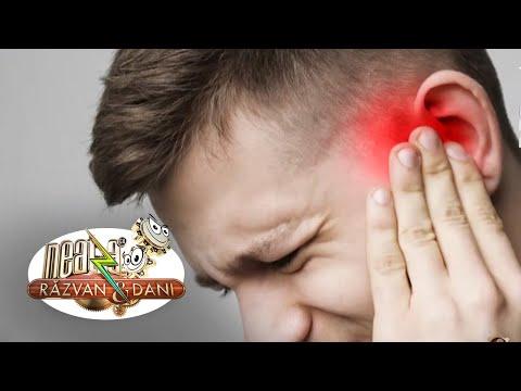 Artrita rottweiler cum să tratezi