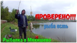Рыбалка в наро фоминском районе новоселки