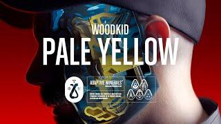 Musik-Video-Miniaturansicht zu Pale Yellow Songtext von Woodkid