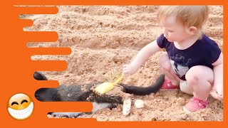 Baby and Cat are Best Friends - Funny Pets Videos