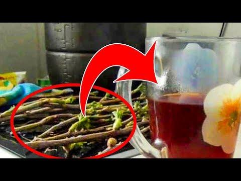 При гипертонии можно пить вино