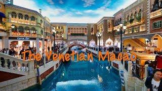 全室スイートの世界最大級カジノホテル The Venetian Macao Vlog #056