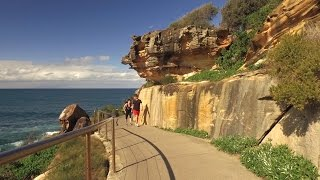 Bondi to Bronte Coastal Walk, Sydney