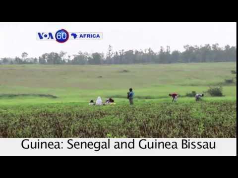 VOA60 Afirka: Jihar Kano, Najeriya, Oktoba 31, 2014