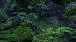 Jungle Rain – 9 hour Rain Forest Sleep Sound – Nature, Relaxation