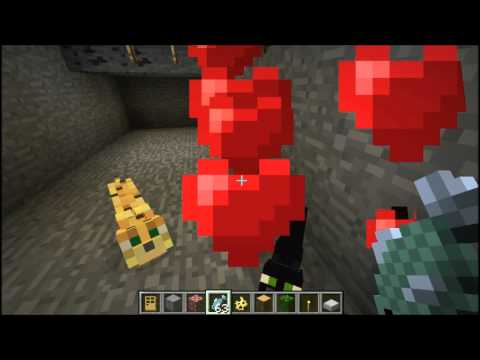 Minecraft 1102 Tutorial How To Tame Ocelots