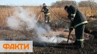 Под Киевом горят торфяники. Дым выедает глаза! Видео