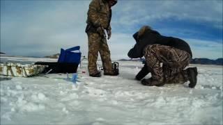 11 Mile Ice Fishing