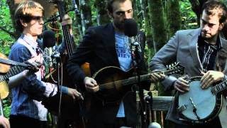 Pickathon 2010: Heart in a Cage - Punch Brothers at Pickathon