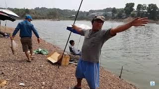 Ngày cá ăn mừng