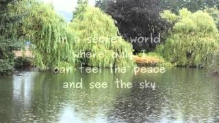 In a Secret World