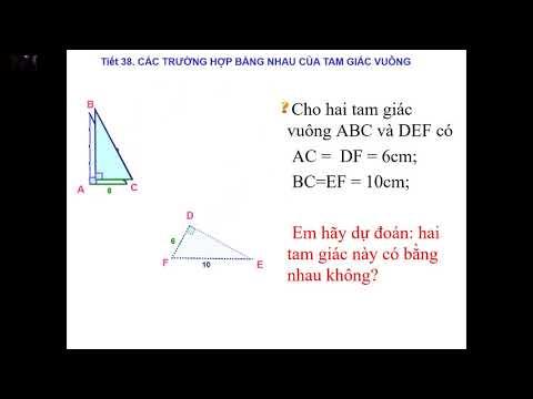 Bài giảng môn Hình học 7 - Các trường hợp bằng nhau của tam giác vuông