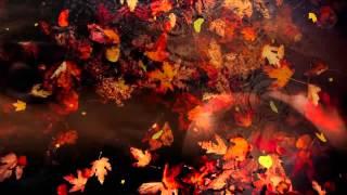 Autumn Love Music- Doris Day Autumn Leaves-Ladyamira