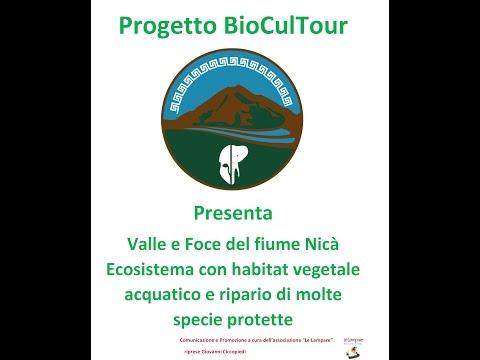 Valle e Foce del Nicà Ecosistema con habitat vegetale acquatico e ripario con molte specie protette
