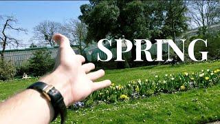 Spring has arrived in Paris!