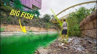 Hidden Fishing In Downtown Austin Texas -- MUTANT BASS?? (Pt. 1)