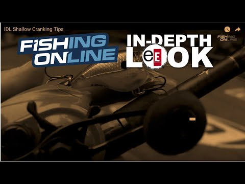 In Depth Look #8   How To Catch Small Mouth Bass
